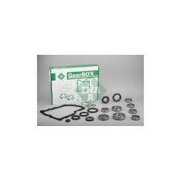 INA Zestaw naprawczy, mechaniczna skrzynia biegów - 462005710