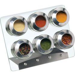 Pojemniki na przyprawy z magnetycznym stojakiem Kitchen Craft