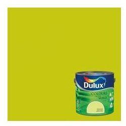 Kolory Świata - Zielone tarasy 5 L Dulux