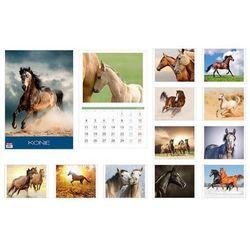 Kalendarz 2016 13 planszowy A3 Konie