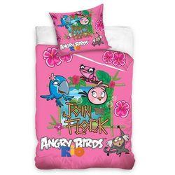 Tip Trade Pościel bawełniana Angry Birds Rio Stella, 140 x 200 cm, 70 x 80 cm