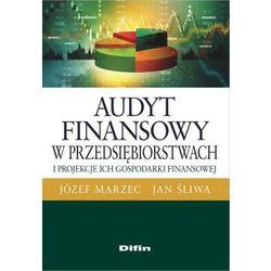 Audyt finansowy w przedsiębiorstwach i projekcje ich gospodarki finansowej - Marzec Józef, Śliwa Jan