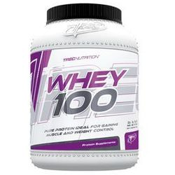 Whey 100 - 600 g