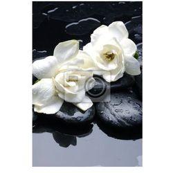 Fototapeta wellness i zdrowia / Masaż kamieniami i gardenia kwiat