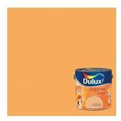 Kolory Świata - Suszone morele 2.5 L Dulux