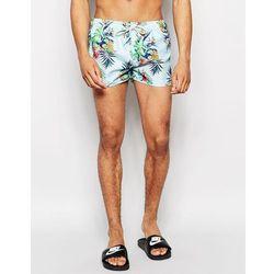Oiler & Boiler Paradise Swim Shortie Shorts - Blue