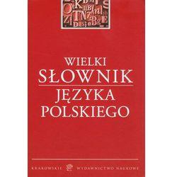 Wielki słownik języka polskiego (opr. twarda)