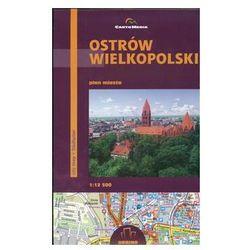 Ostrów Wielkopolski Plan miasta