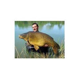 Foto naklejka samoprzylepna 100 x 100 cm - Zadowolony rybak trzyma piękne karpie