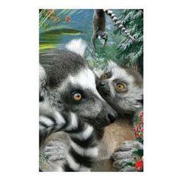 Minikartka 3D - Lemur