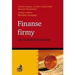 Finanse firmy. Jak zarządzać kapitałem - Wiesław Szczęsny, Jan Śliwa, Rafał Cieślik, Sławomir Wymysłowski