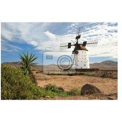 Obraz Historic Wiatrak na Fuerteventura