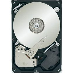 Dysk twardy Seagate ST1000VM002 - cache: 64MB, SATA II, 5900 obr/min