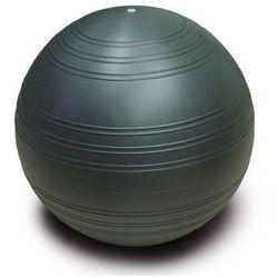 Piłka gimnastyczna Togu Powerball Challenge ABS