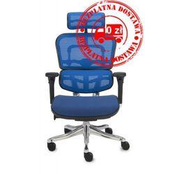 Fotel biurowy Ergohuman Plus