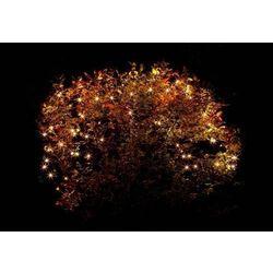 Rovens.pl Oświetlenie do ogrodu pawilonów lampki zewnętrzne sieć 160 LED