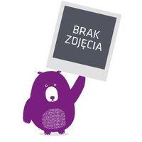 Ściąga szkoła podstawowa 4b Język polski +mini Greg