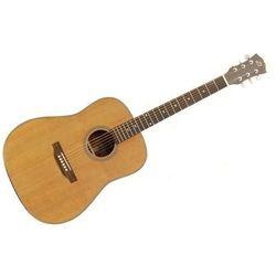 Gitara akustyczna Dowina D-555