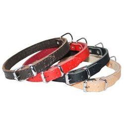 Dingo Obroża skórzana podszyta filcem 1,0x36cm czerwona