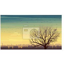 Fototapeta Samotne drzewo z ptaków na tle miasta o zachodzie słońca.