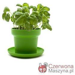 2 Doniczki na zioła Authentics Green zielone