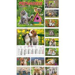 Kalendarz 2016 Przyjaciele