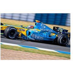 Fototapeta Jerez de la Frontera, Hiszpania - 22 czerwca: Fernando Alonso z Renault F1 wyścigi na sesji szkoleniowej w dniu
