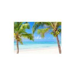Foto naklejka samoprzylepna 100 x 100 cm - Tropikalna plaża z palmami kokosowymi i przejrzystych wodach