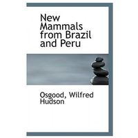 New Mammals from Brazil and Peru