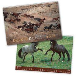 2016 Kalendarz ścienny Konie
