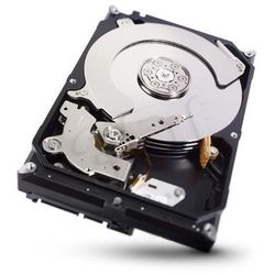 Dysk twardy Seagate ST2000VX000 - pojemność: 2 TB, cache: 64MB, SATA III, 7200 obr/min