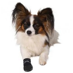 Wodoodporne buty dla psa - różne rozmiary Rozmiar:M