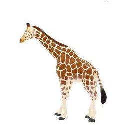 Żyrafa ANIMAL PLANET