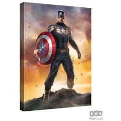 Obraz MARVEL Capitan America: The Winter Soldier PPD339