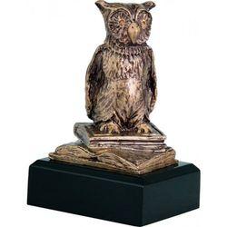 Statuetka Mądra Sowa, Wzorowy Uczeń
