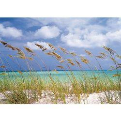 Fototapeta KOMAR 8-515 Ocean Breeze National Geographic