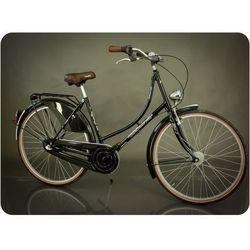 Rower miejski Amsterdam 28 3B czarny połysk 20