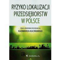 Ryzyko lokalizacji przedsiębiorstw w Polsce