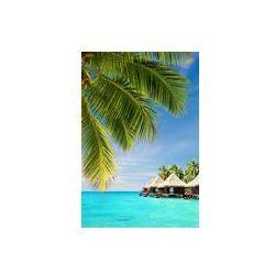 Foto naklejka samoprzylepna 100 x 100 cm - Palmy kokosowe pozostawia nad oceanem z bungalowów