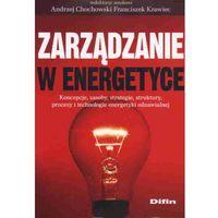 Zarządzanie w energetyce (opr. miękka)