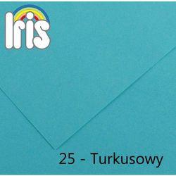 Brystol Canson Iris A3/185g turkusowy 50ark.