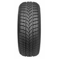 Taurus Winter 601 205/45 R17 88 V